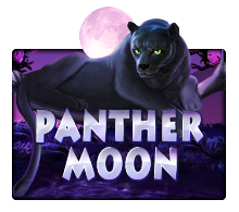 slotxo-panthermoon